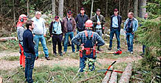 Dutch lumberjacks